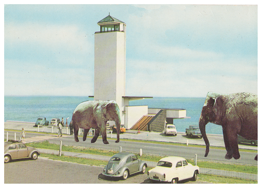 Disappointing Elephants